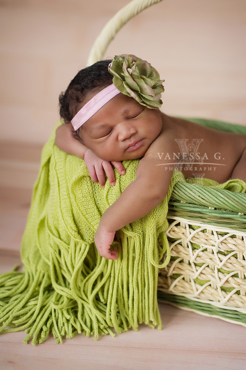 11d8f92edcb93 african american newborn in green basket nc Vanessa G. Photography